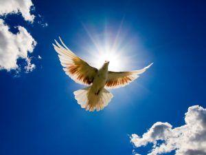 Християни Закарпаття відзначають велике свято - Главосіки