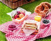 Правила етикету на пікніку
